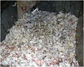 Plastic Biomass And Demolition Waste Washing Shredding